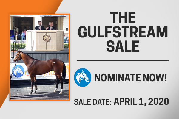 fasig tipton the gulfstream sale